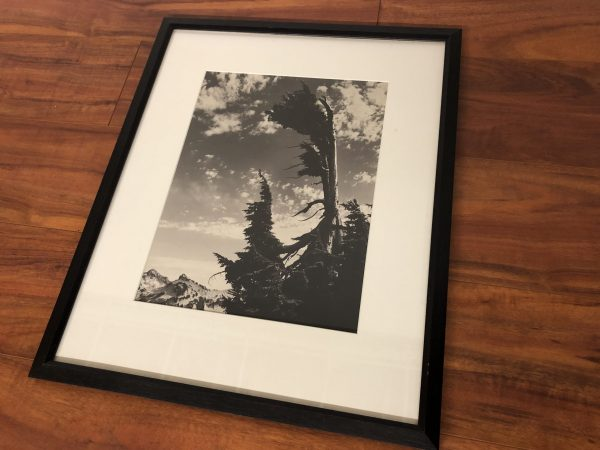 Tom McLauchlan Northwest Framed Photo – $195